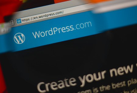 company working on wordpress services